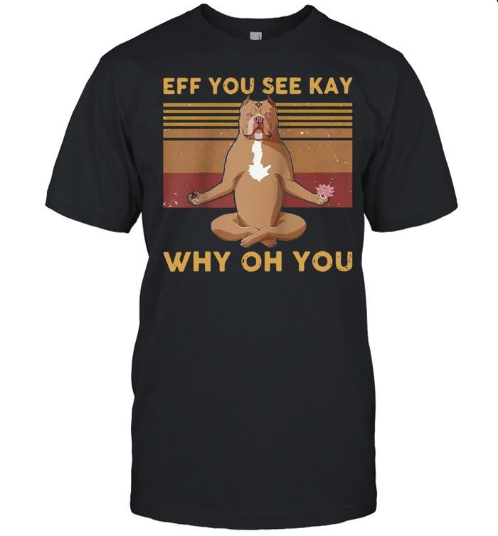 Eff You See Kay Why Oh You Vintage Pitbull Yoga Lover Raglan Baseball Shirt
